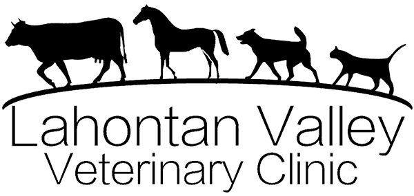 Lahontan Valley Veterinary Clinic