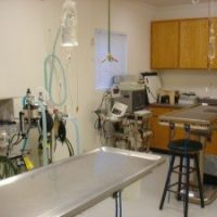 The surgical suite